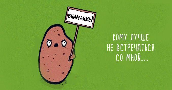 Что такое батат сладкий картофель и с чем его едят 20