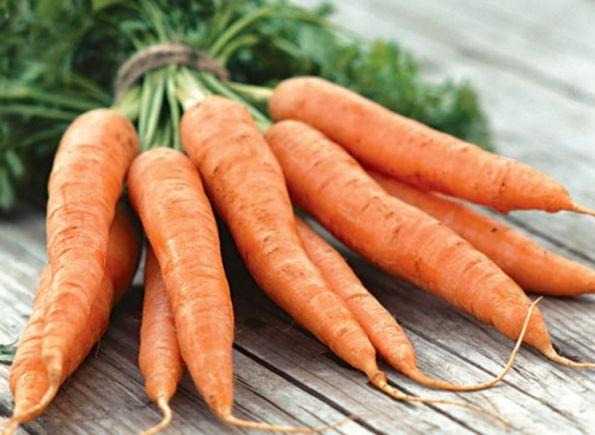 Декоративные кролики, уход и кормление как залог здоровья 3