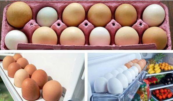 Срок годности яиц сырых, вареных, пасхальных, очищенных при хранении в холодильнике, подвале, морозилке 13