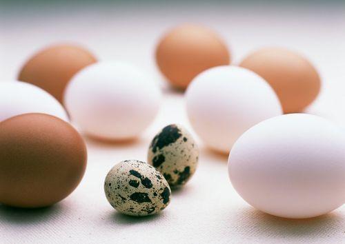 Срок годности яиц сырых, вареных, пасхальных, очищенных при хранении в холодильнике, подвале, морозилке 18