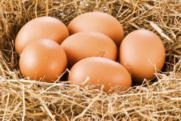 Срок годности яиц сырых, вареных, пасхальных, очищенных при хранении в холодильнике, подвале, морозилке 3