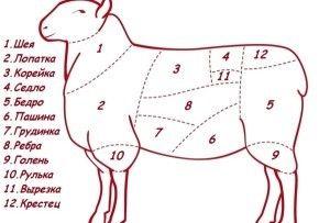 Как правильно зарезать и разделать барана