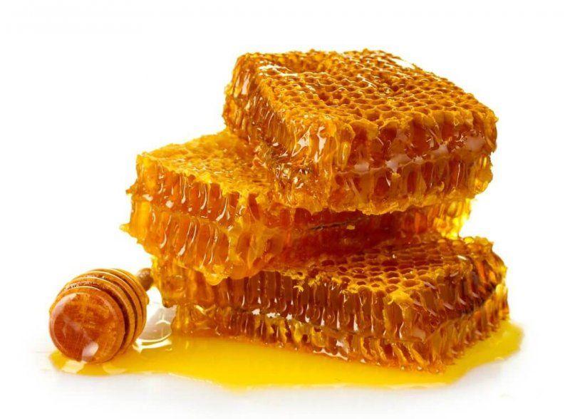 Как пчелы строят соты и делают мед 9