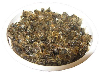 Полезные свойства, применение пчелиного подмора настойка на водке для суставов, масло для компрессов, средство для ванночек 4