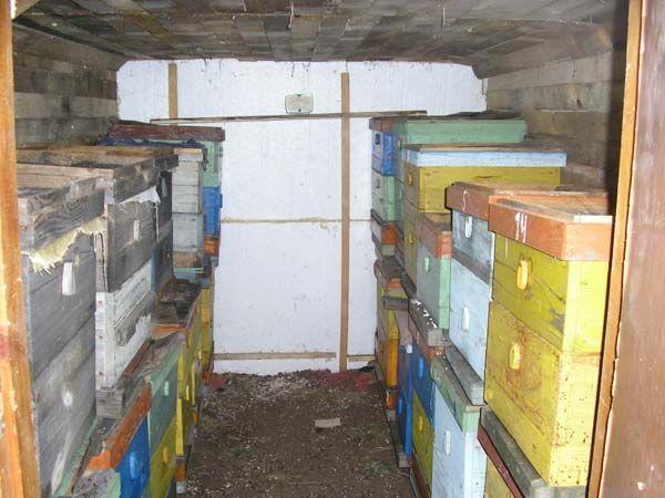 Как организовать зимовку пчёл 3