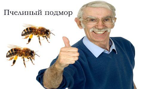 Что лечит пчелиный подмор 9