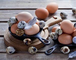 Перепелиное яйцо польза и вред для мужчин как принимать 3