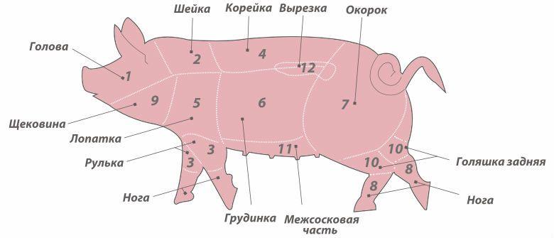 Ориентировочная таблица веса свиней 8