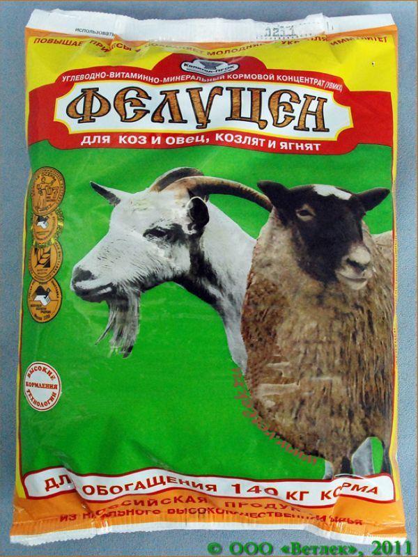 Разновидности пород молочных коз 2
